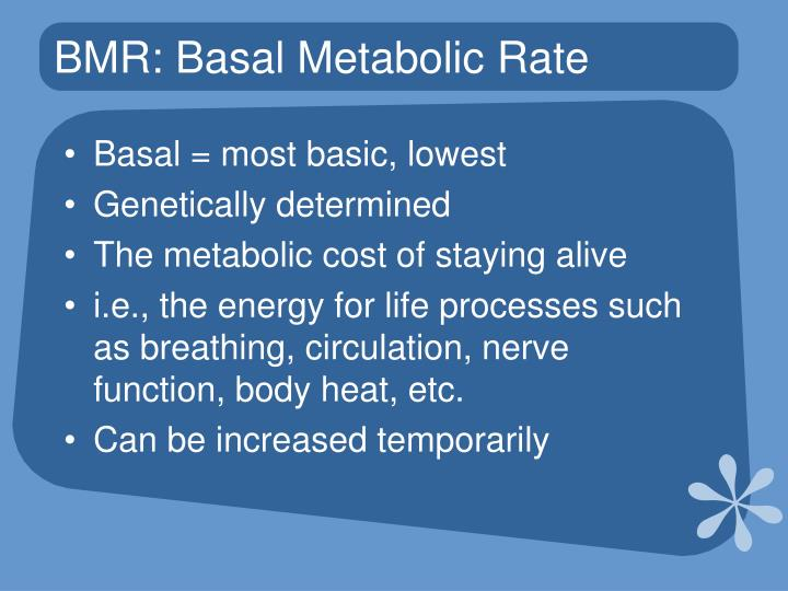 BMR: Basal Metabolic Rate