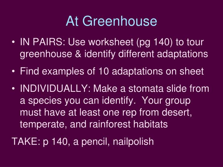 At Greenhouse