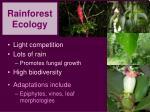 rainforest ecology