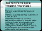 important points about phonemic awareness