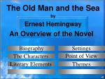 an overview of the novel