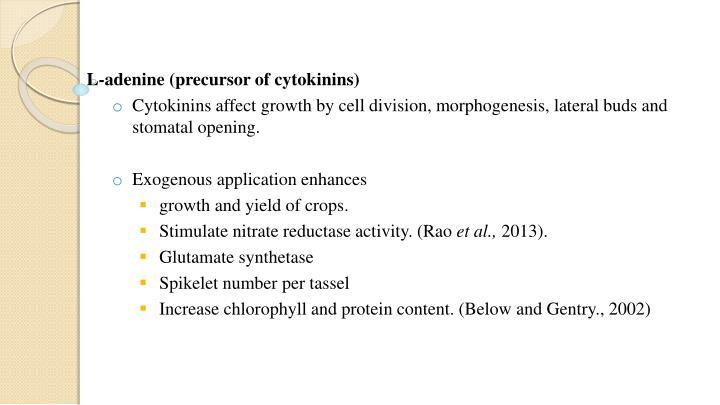 L-adenine (precursor of