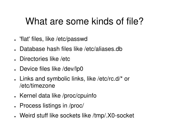 What are some kinds of file?