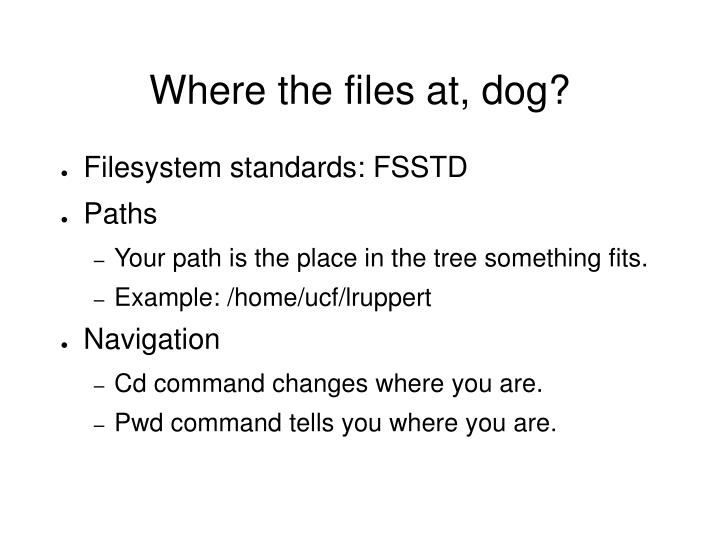 Where the files at, dog?