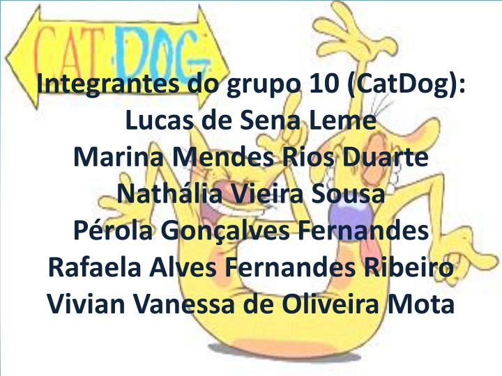 Integrantes do grupo 10 (