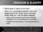 freedom slavery