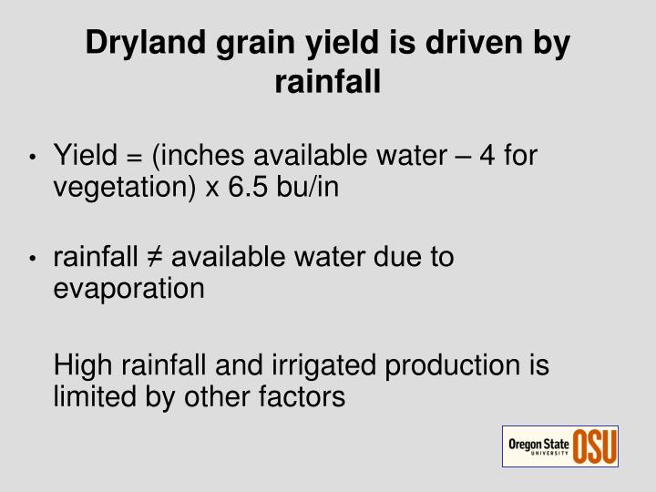 Dryland grain yield is driven by rainfall