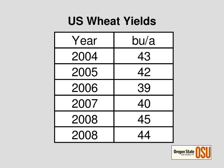 US Wheat Yields