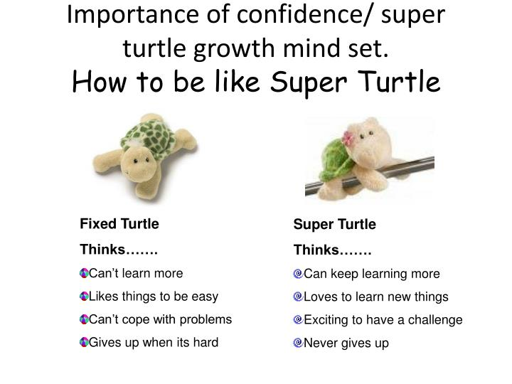 Importance of confidence/ super turtle growth mind set.