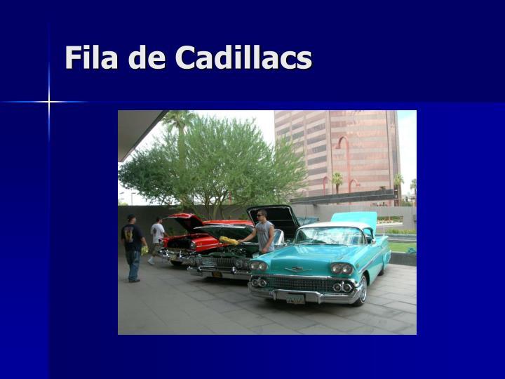 Fila de Cadillacs