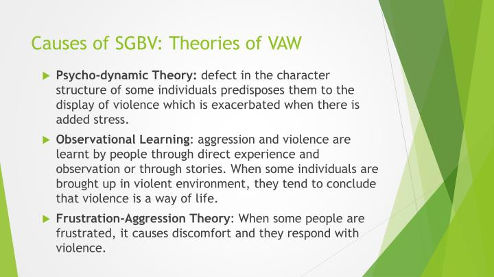 the theories on the possible causes for childhood aggression This review describes the occurrence of depression in children, symptoms, causes there are several theories of discussed the causes and cures of childhood.