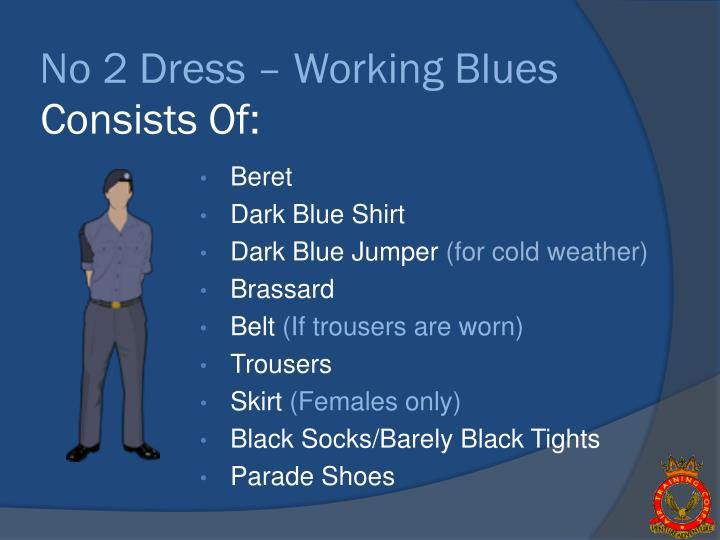 No 2 Dress – Working Blues