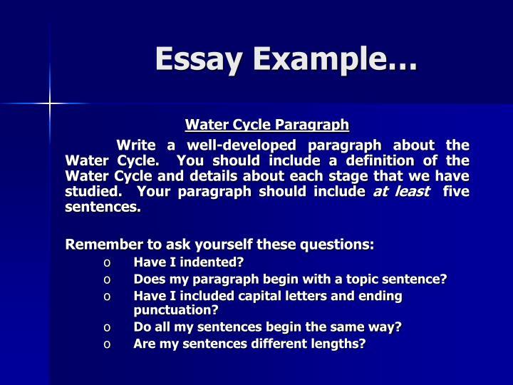 Essay Example…