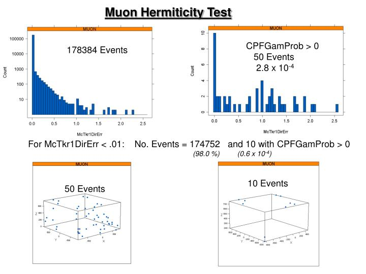 Muon Hermiticity Test