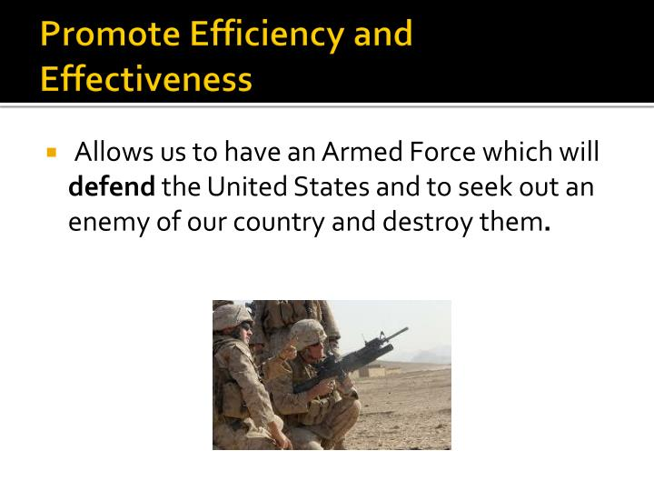 Promote Efficiency and Effectiveness