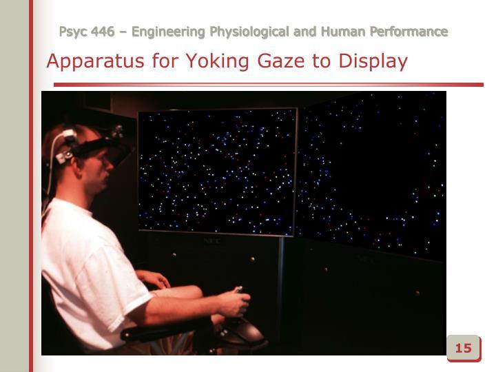 Apparatus for Yoking Gaze to Display