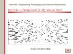 central peripheral full visual field