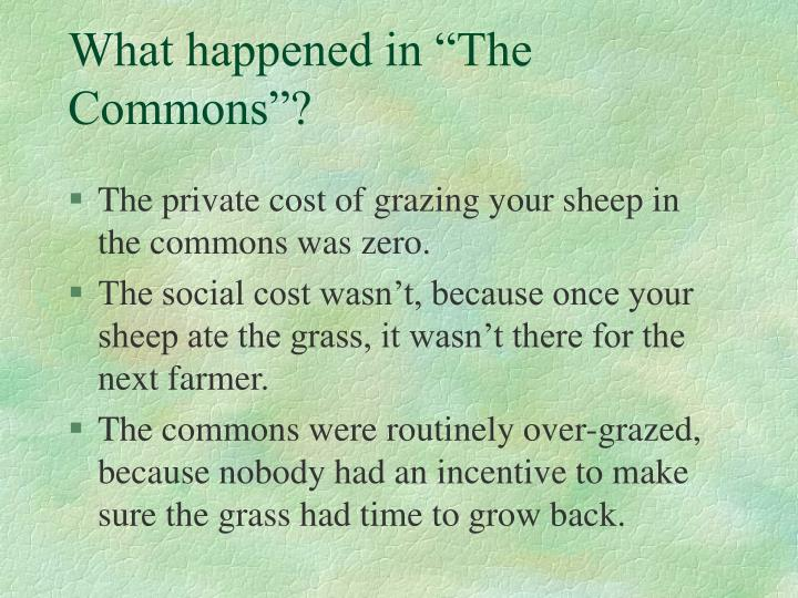 "What happened in ""The Commons""?"