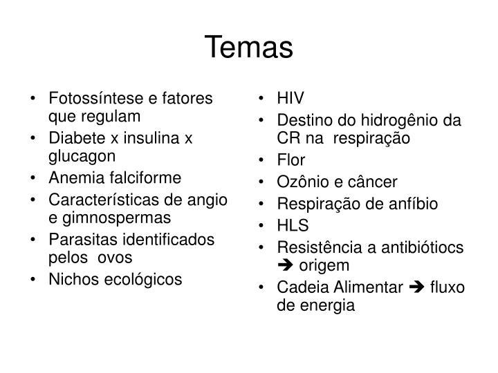 Fotossíntese e fatores que regulam