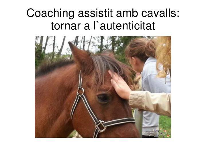 Coaching assistit amb cavalls: tornar a l`autenticitat