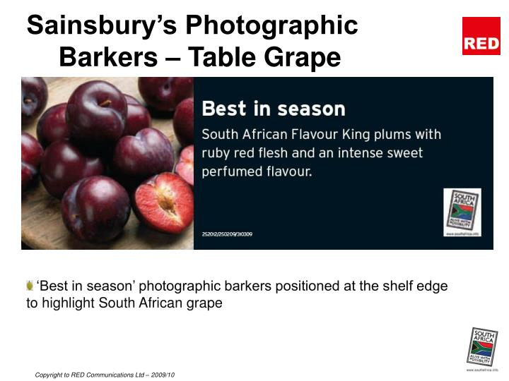 Sainsbury s photographic barkers table grape