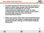 macromedia flash video flv