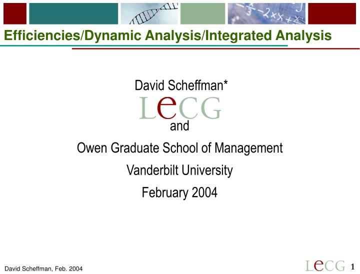 Efficiencies dynamic analysis integrated analysis