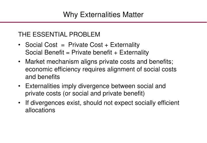 Why Externalities Matter