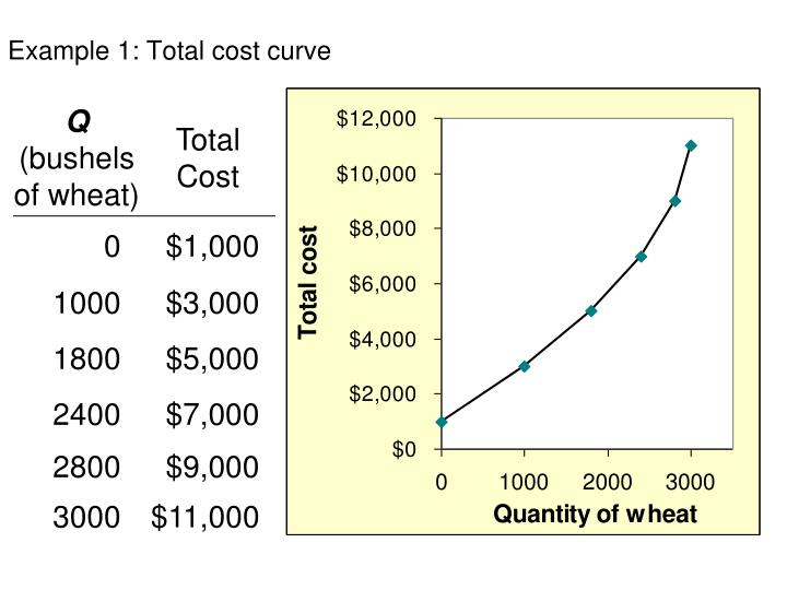 Example 1: Total cost curve