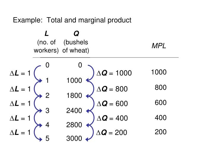 Example:  Total and marginal product