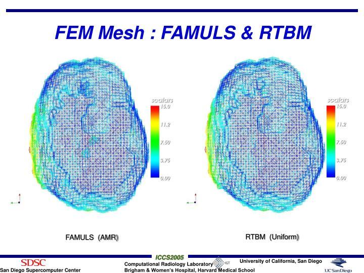 FEM Mesh : FAMULS & RTBM