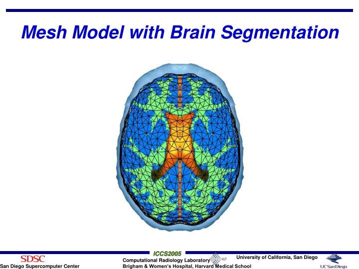 Mesh Model with Brain Segmentation