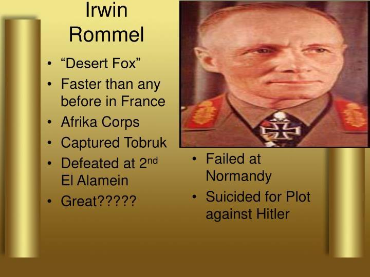 """""""Desert Fox"""""""