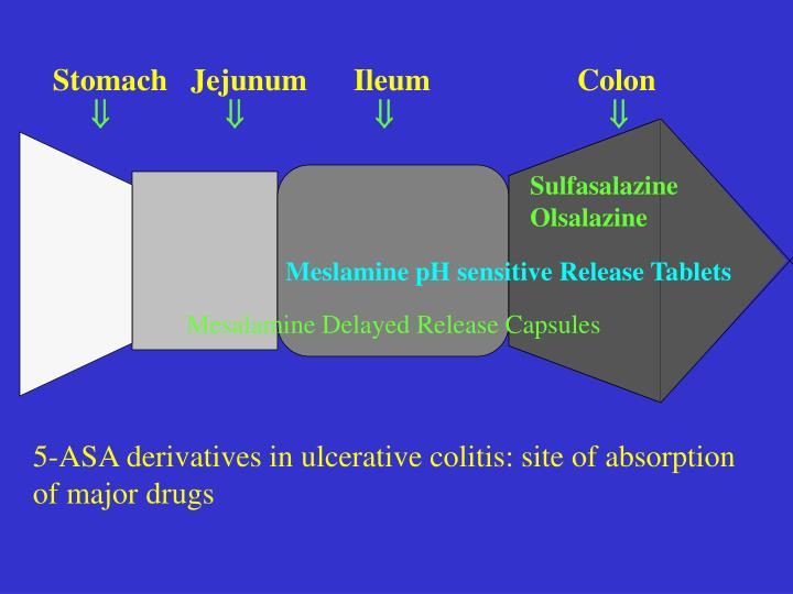 Stomach   Jejunum      Ileum                   Colon