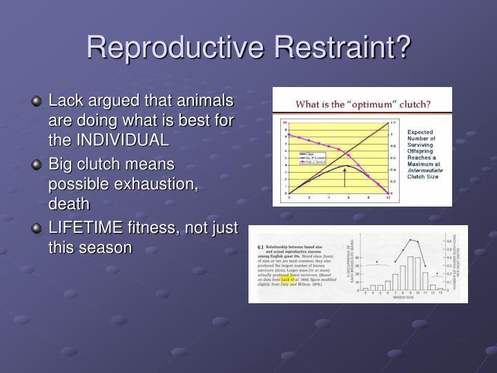 Reproductive Restraint?