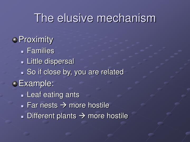 The elusive mechanism