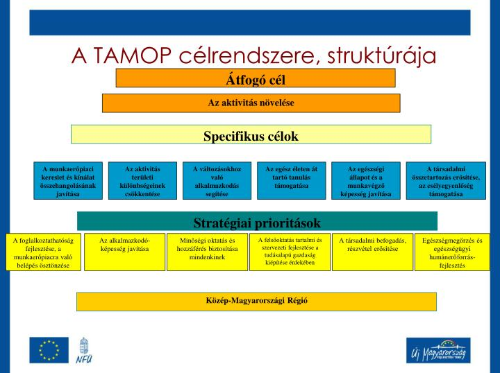 A TAMOP célrendszere, struktúrája
