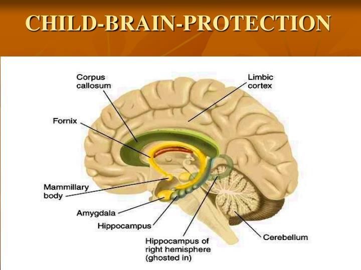 CHILD-BRAIN-PROTECTION