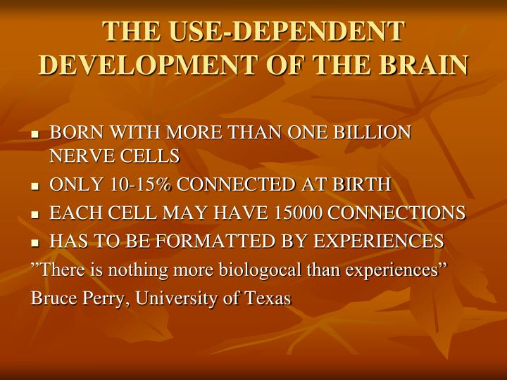 THE USE-DEPENDENT DEVELOPMENT OF THE BRAIN