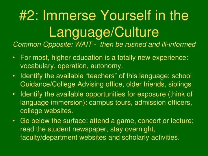 #2: Immerse Yourself in the Language/Culture