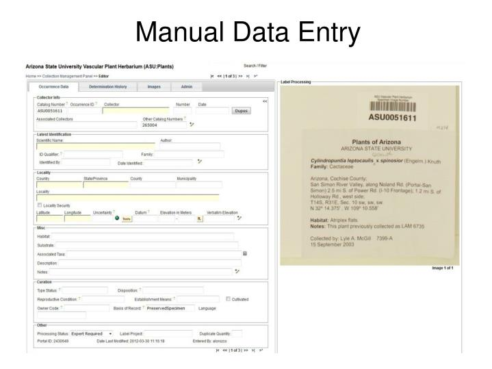 Manual Data Entry