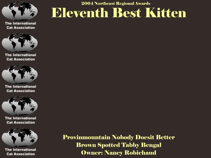 Eleventh Best Kitten