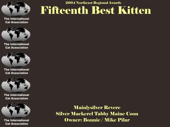 Fifteenth Best Kitten