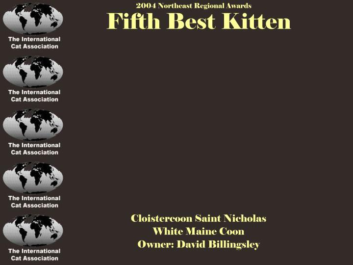 Fifth Best Kitten