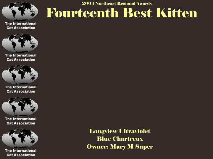 Fourteenth Best Kitten
