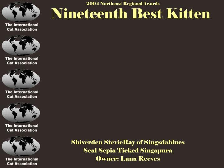 Nineteenth Best Kitten