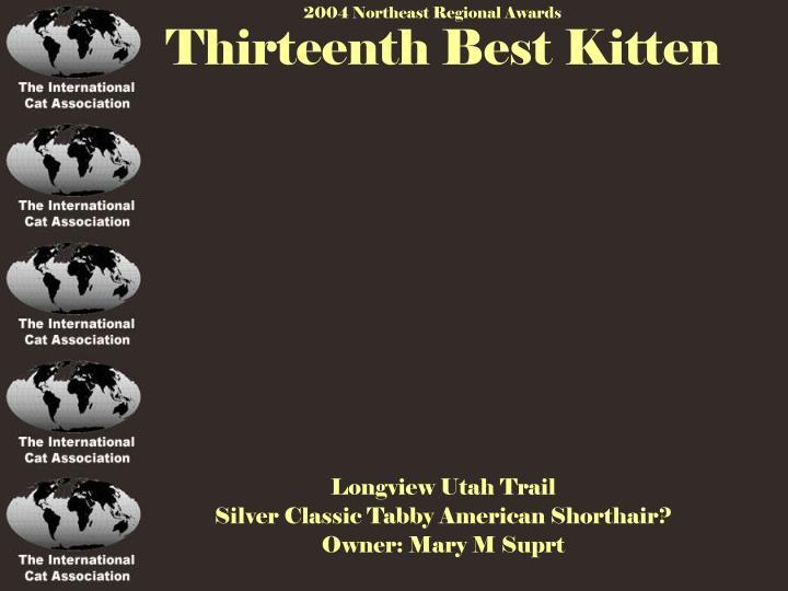 Thirteenth Best Kitten