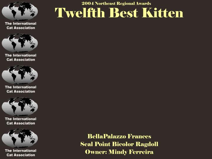 Twelfth Best Kitten