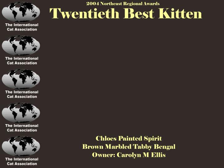 Twentieth Best Kitten