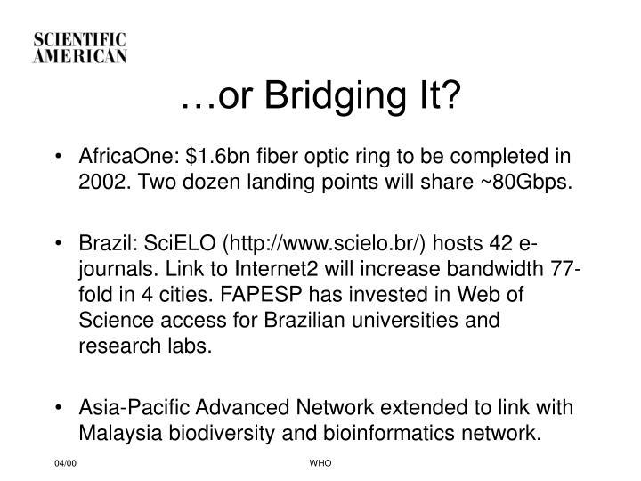 …or Bridging It?